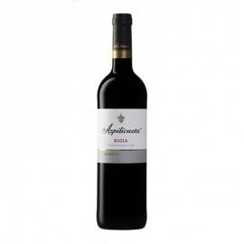 Botella vino tinto Azpilicueta