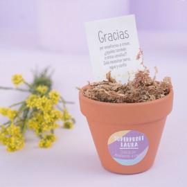 flores para las profes
