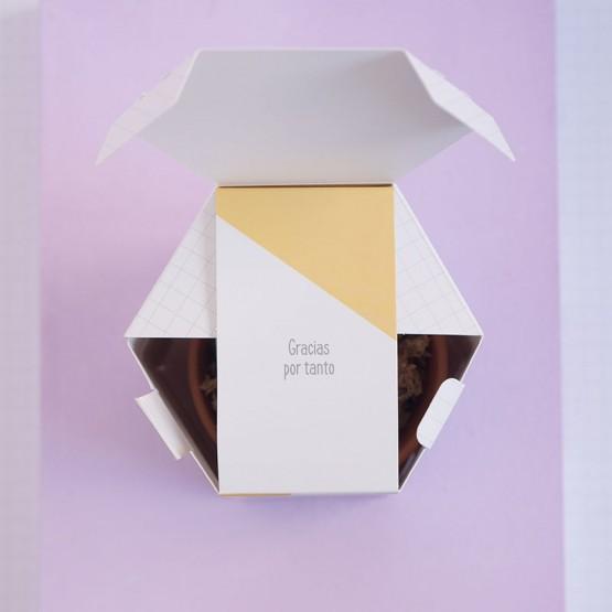 packaging bonito profes