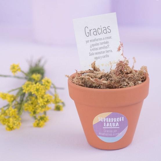 flores para maestras