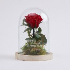 rosa eterna bella y bestia personalizada